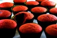 Freshly baked red velvet cupcakes