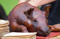Roasted piglet