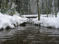 Snow Covered Wilderness Bridge