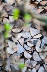 Piled firewood