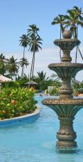 Tropical Pool & Fountain