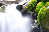Splash of Mountain Stream
