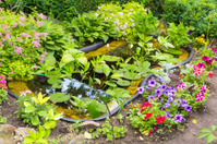 fragment garden with an artificial pond