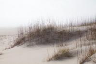 Soft Sandy Ocean Dunes