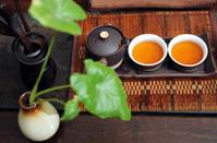 Tea is the tea ceremony