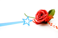 Rose with plastic star