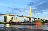 Cargo ship and Rama IX suspension bridge