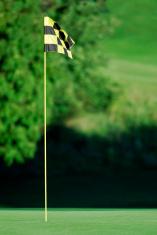 Golf hole with flag.