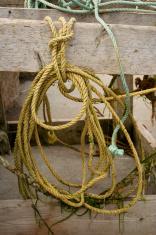 Boating - Ropes