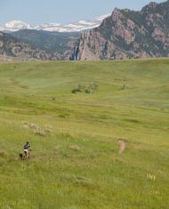 lone mountian bike rider, high prairie and mountains