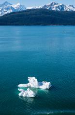 Icebergs Near College Fjord Alaska