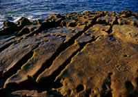 Stone on shore with graffiti