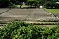 Last Hakka Cemetery in Singapore