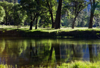 Merced River - Yosemite Valley