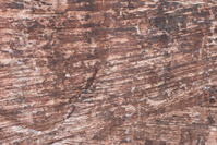 Red Rock Sandstone Texture
