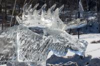Ice Moose Close