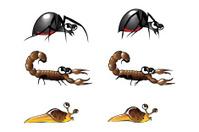 Bug Illustrations 5