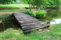 Wooden bridge in a park