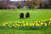 Springtime at the Gardens
