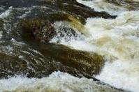 Raging Poudre River