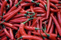 Bunch of Red Chillies