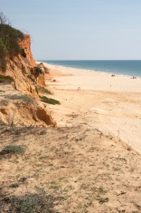 Deserted Algarve beach weeds in foreground