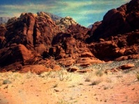 Rustic Desert