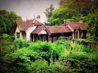 The Ivy Lodge