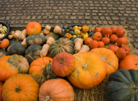 pumpkins on marketplace