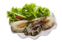 King and waterleg shrimps