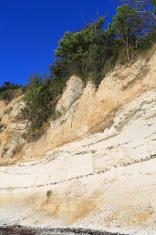 Stevns Klint - Limestone Cliff