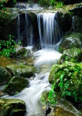 Japanese Garden Falls (Asian series)