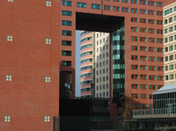 Big buildings in Rotterdam, Holland