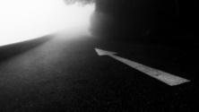 Foggy Night around the Mountain Road
