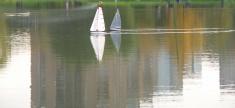 sailer on water