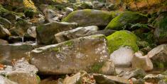 Giant riverbed rocks