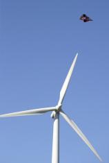Double Wind Energy