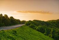 View of an Arkansas road at sunset