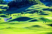 Golf club with nice green