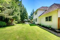 SUny green backyard with yellow hosue.
