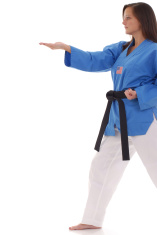 Martial arts knife hand form