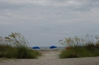 Beautiful Beach with Umbrellas