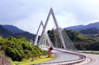 Naranjito Bridge Cable-stayed Bridge.