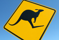 Kangaroo Road Sign in NSW, Australia