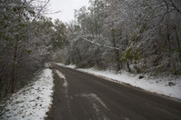 Snowfall on road