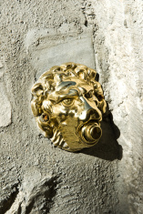Doorbell Gold lion!