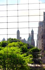 Cityscape Central Park