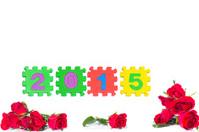 Celebrating the New Year 2015