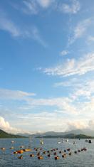 Fishing boats, sailiboats, boats in blue sky background