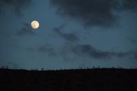 Moon Full Sky Night